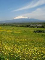 Sicilská sopka Etna